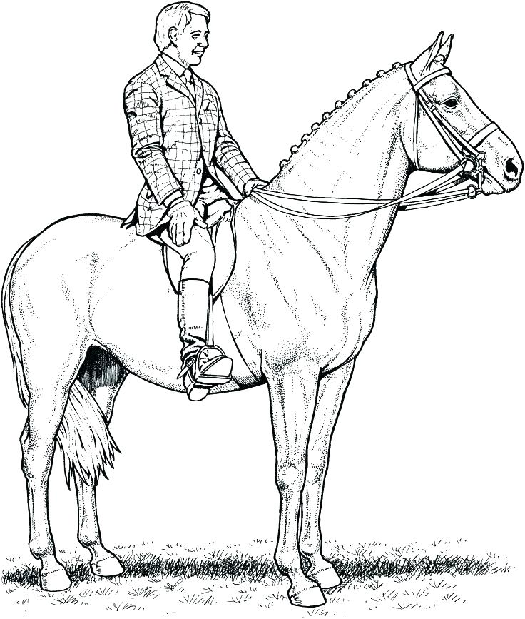 736x867 Coloring Page Of A Horse Coloring Pages Of Horses Jumping Coloring