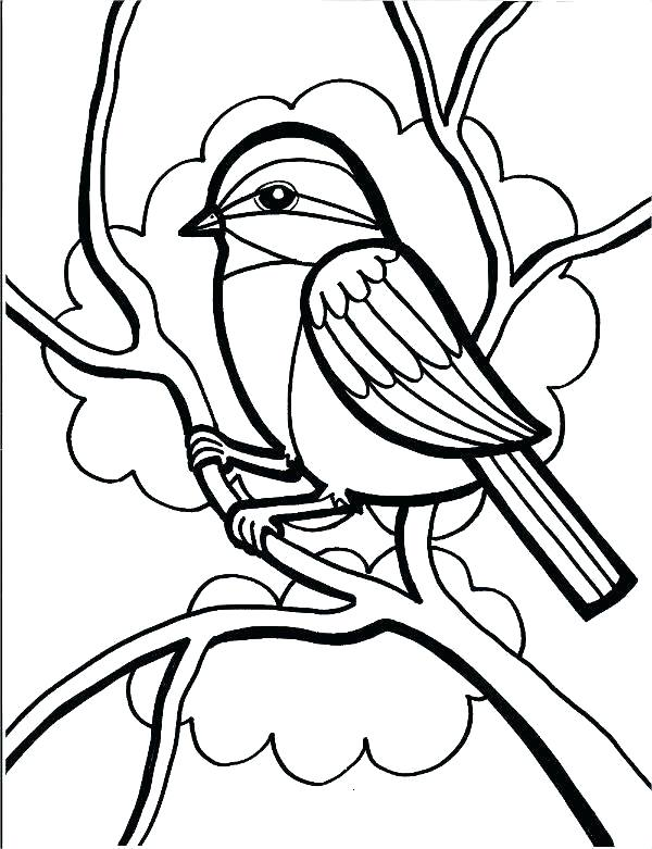 600x781 Free Tropical Bird Coloring Pages Printable Sheets