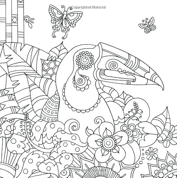 600x603 Toucan Coloring Page Wildlife Coloring Books Toucan Bird Tropical
