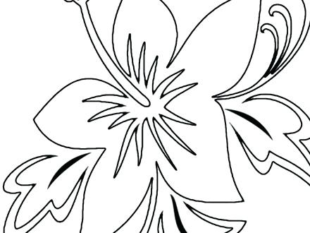 440x330 Tropical Coloring Pages Tropical Bird Coloring Pages Free Tropical