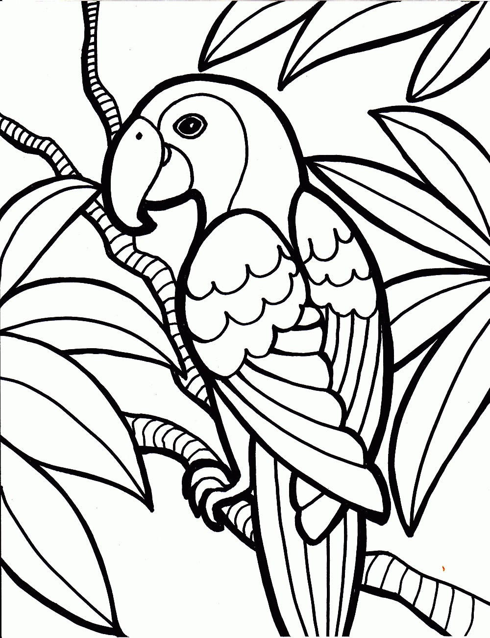 Tropical Bird Coloring Pages at GetDrawings.com | Free for personal ...