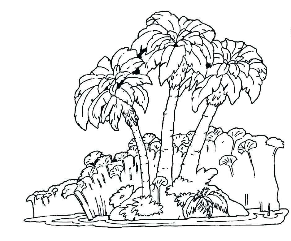 940x779 Rainforest Flowers Coloring Pages Tropical Coloring Pages Tropical