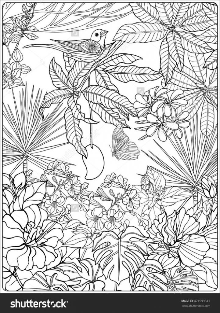 721x1024 Tropical Coloring Pages For Adults