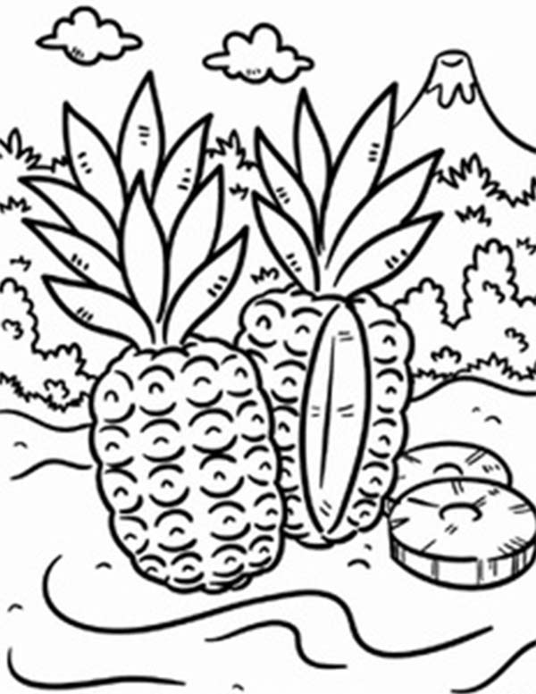 600x777 Wild Pineapple In A Tropical Island Coloring Page