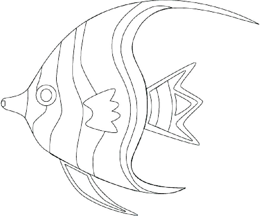 875x728 Ocean Fish Coloring Pages Tropical Fish Colori Pages Ocean Fish