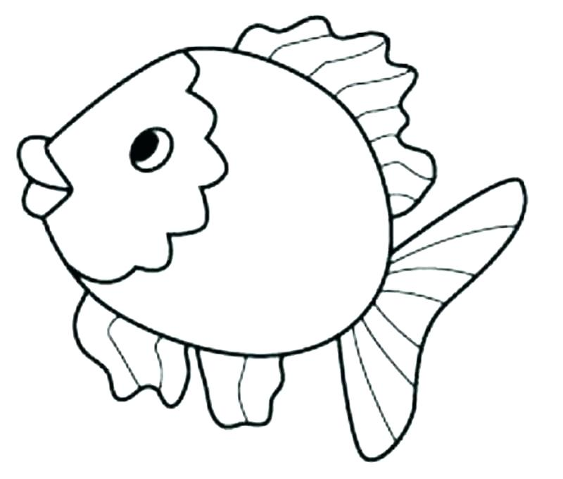 800x680 Realistic Fish Coloring Pages Tropical Fish Coloring Page Tropical