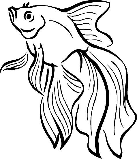 475x552 Realistic Tropical Fish Coloring Pages