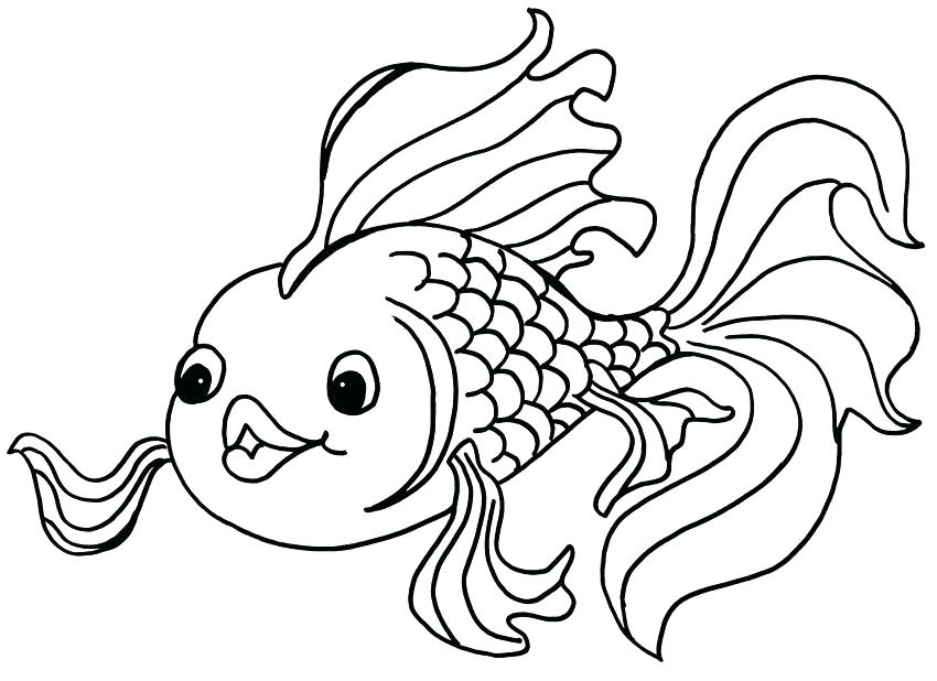 850x618 Tropical Fish Coloring Pages Cute Fish Coloring Pages Pin Drawn