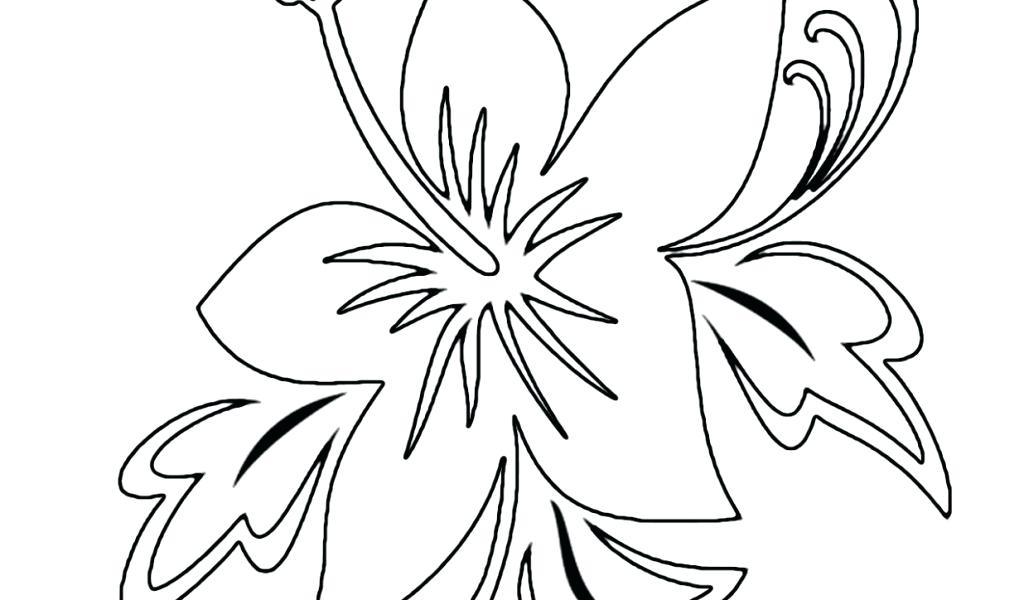 1024x600 Tropical Flower Coloring Pages Free Coloring Pages For Kids