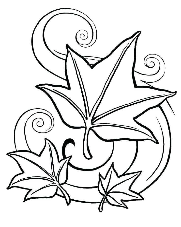 736x920 Coloring Page Leaf Coloring Page Leaves Coloring Pages