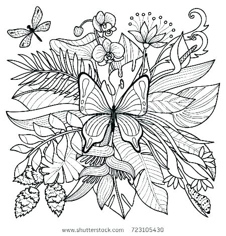 450x470 Tropical Coloring Pages Plants Colouring Pages Tropical Coloring