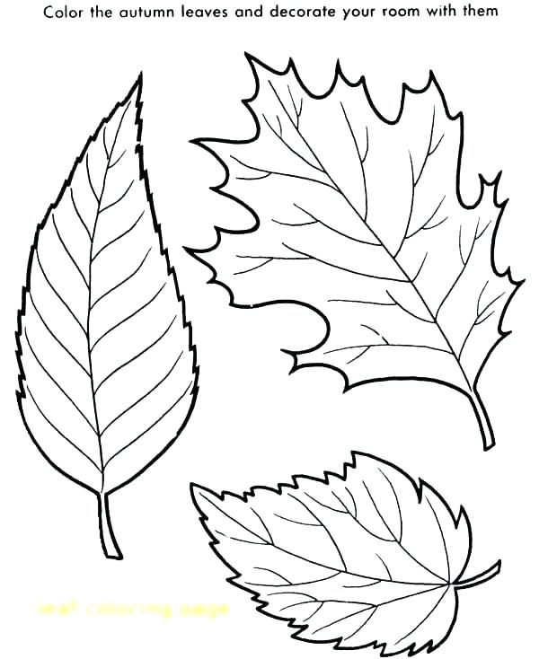 600x734 Coloring Page Leaves Fall Leaves Coloring Page Printable Kids