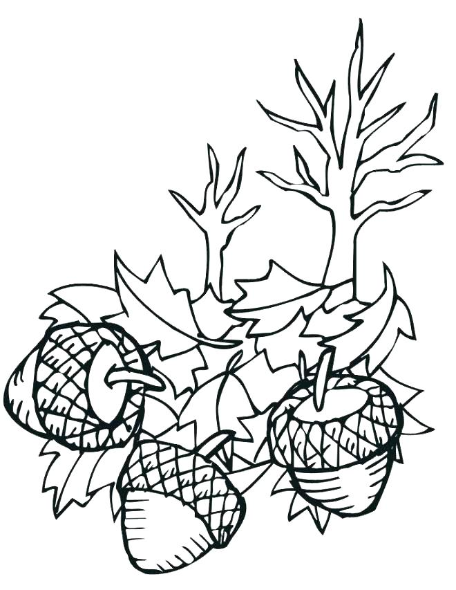 660x853 Coloring Pages Leaves Autumn Gallery Coloring Pages Leaves