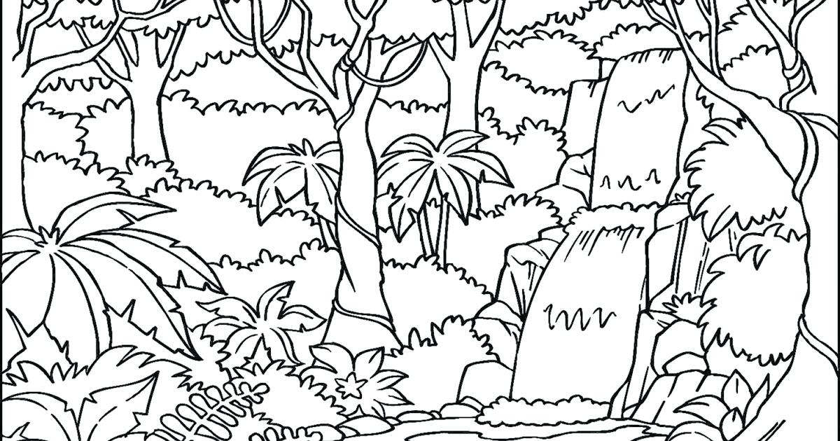 1200x630 Rainforest Coloring Page Tropical Coloring Pages Coloring Pages