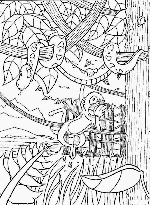 584x800 Rainforest Coloring Pages To Print Printable Tropical Free
