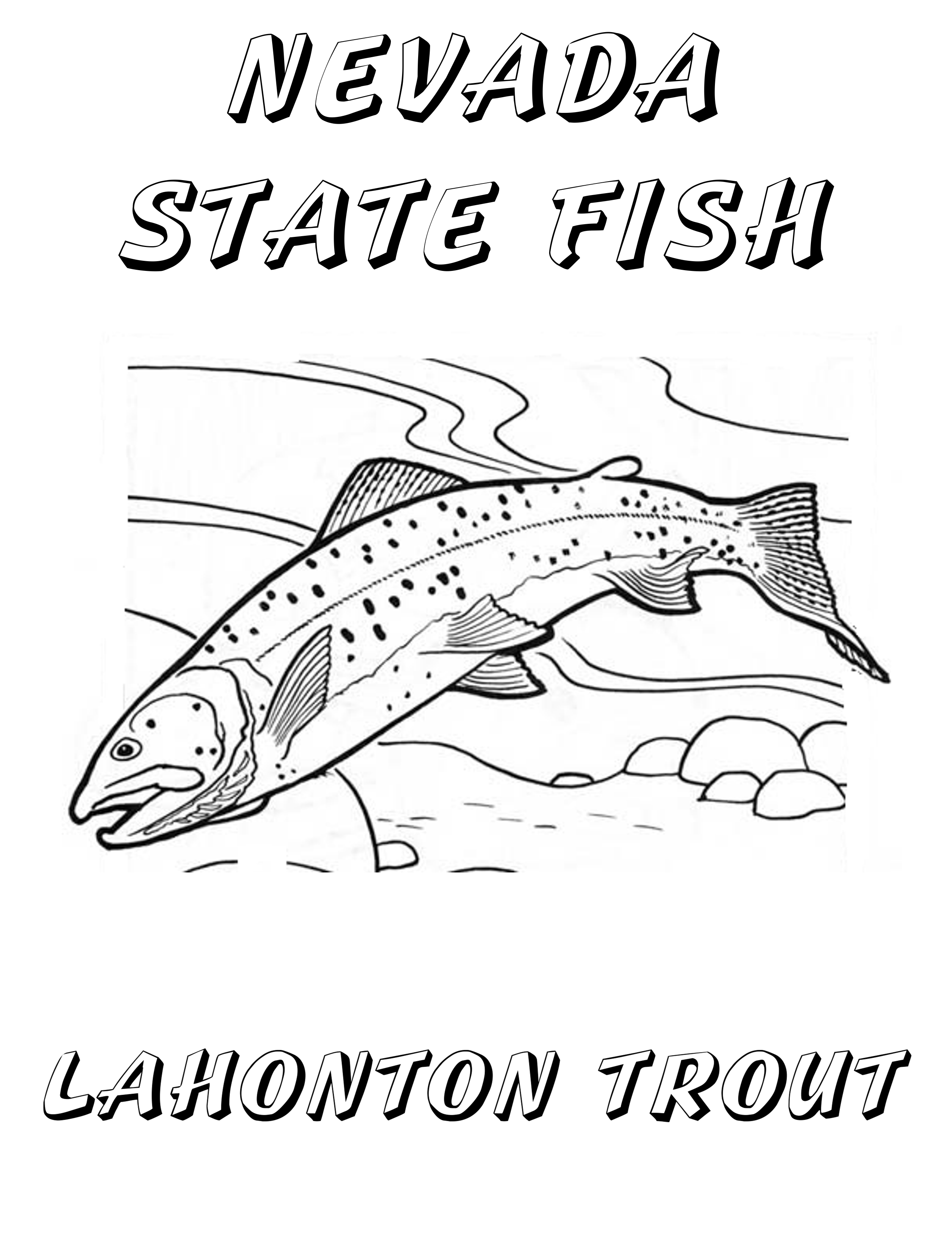 2550x3300 Trout Coloring Page