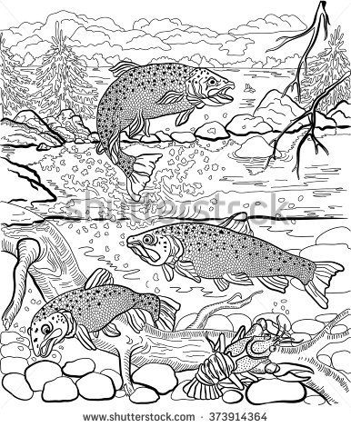 386x470 Underwater Life On The River Trout And Cancer Swim Under Water