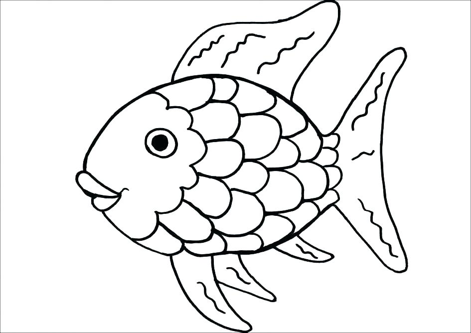 945x668 Brook Trout Coloring Page Rainbow Trout Coloring Page Brook
