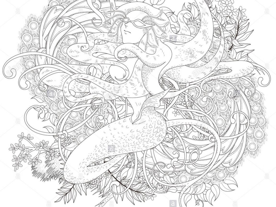 1152x864 Brown Trout Coloring Pages Shocking Caddisfly For Printable Adults