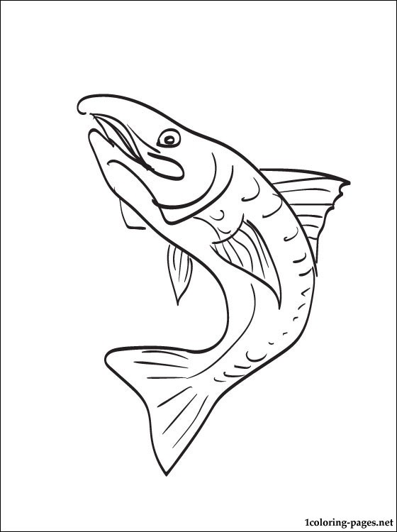 560x750 Coloring Page Trout Coloring Pages