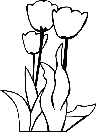 366x500 Tulips Coloring Pages Tulip Coloring Pages For Adults Coloring