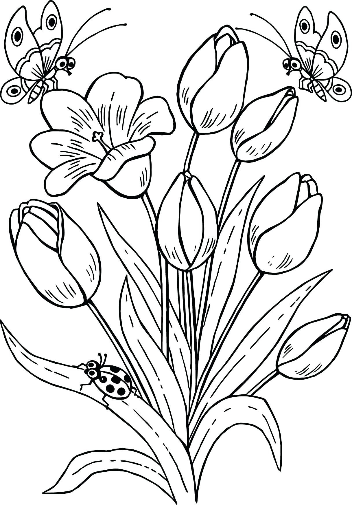 1217x1744 Coloring Pages Tulip Coloring Pages Tulip Flower Coloring Pages