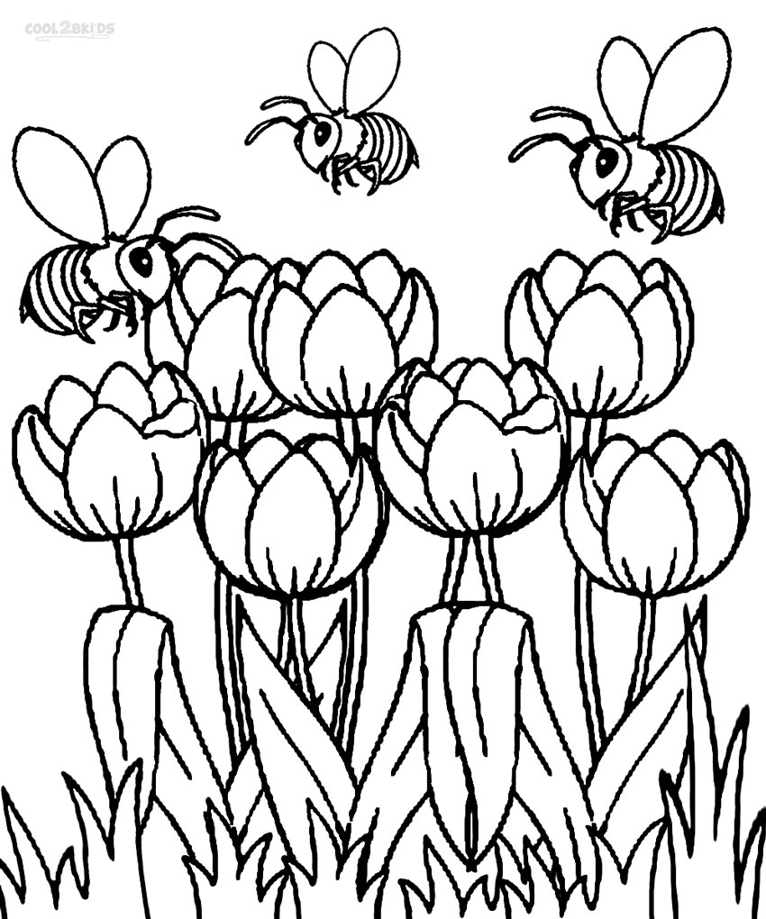 850x1020 Printable Tulip Coloring Pages For Kids