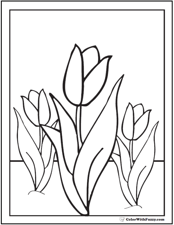 590x762 Tulip Flower Coloring Pages Pdf Printables