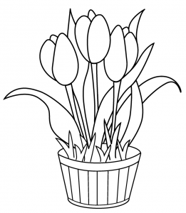 261x300 Tulip Flower Coloring Pages Free Printable