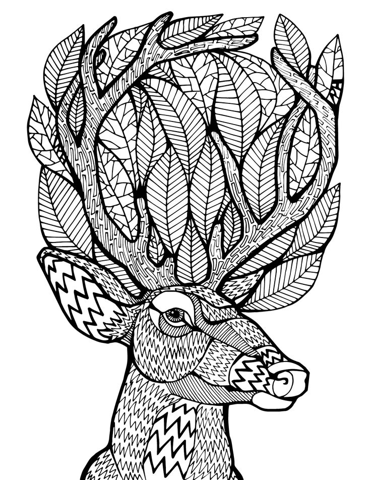 736x952 Adult Coloring Pages Deer Tumblr Free