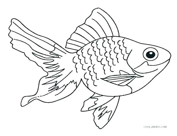 618x474 Fish Coloring Pages Printable Small Fish Coloring Pages For Kids