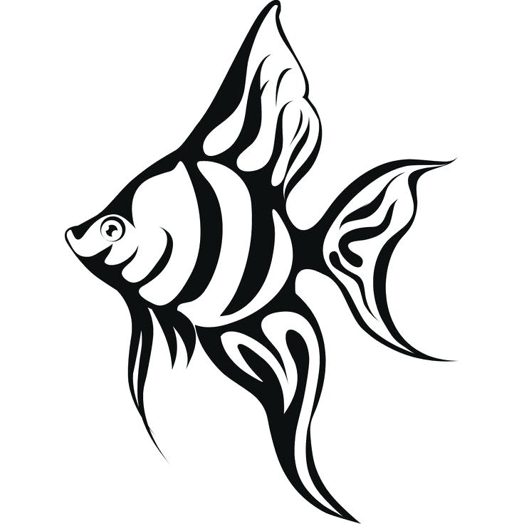 736x736 Realistic Fish Coloring Pages Delightful Fish Coloring E Image
