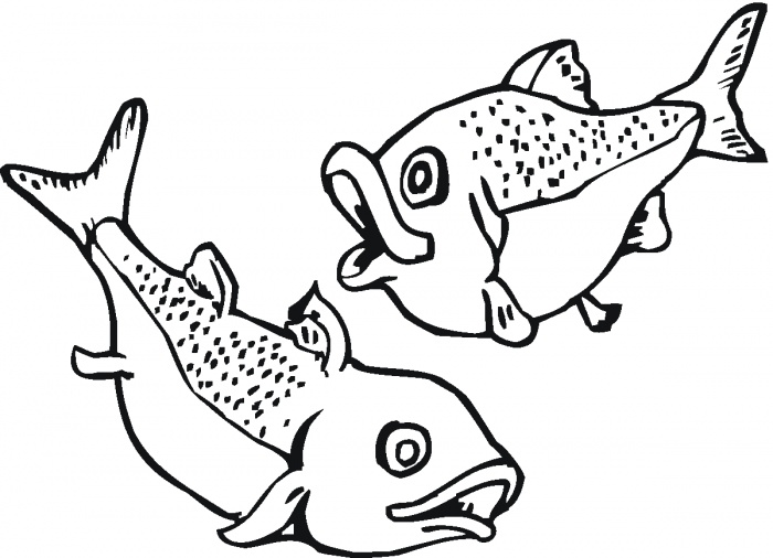 700x506 Tuna Fish Coloring Pages Pdf Inspiring Bridal Shower Ideas