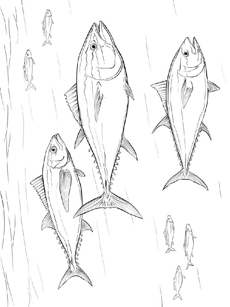 750x1000 Tuna Fish Coloring Pages Download And Print Tuna Fish Coloring Pages
