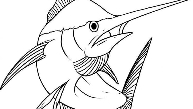 750x425 Tuna Fish Coloring Page Tuna Fish Drawing