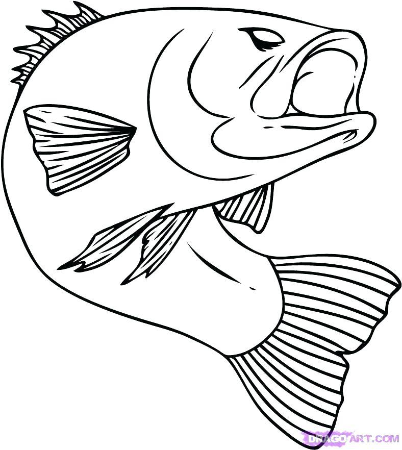 788x882 Cartoon Fish Coloring Pages Cartoon Fish Coloring Pages Free Fish