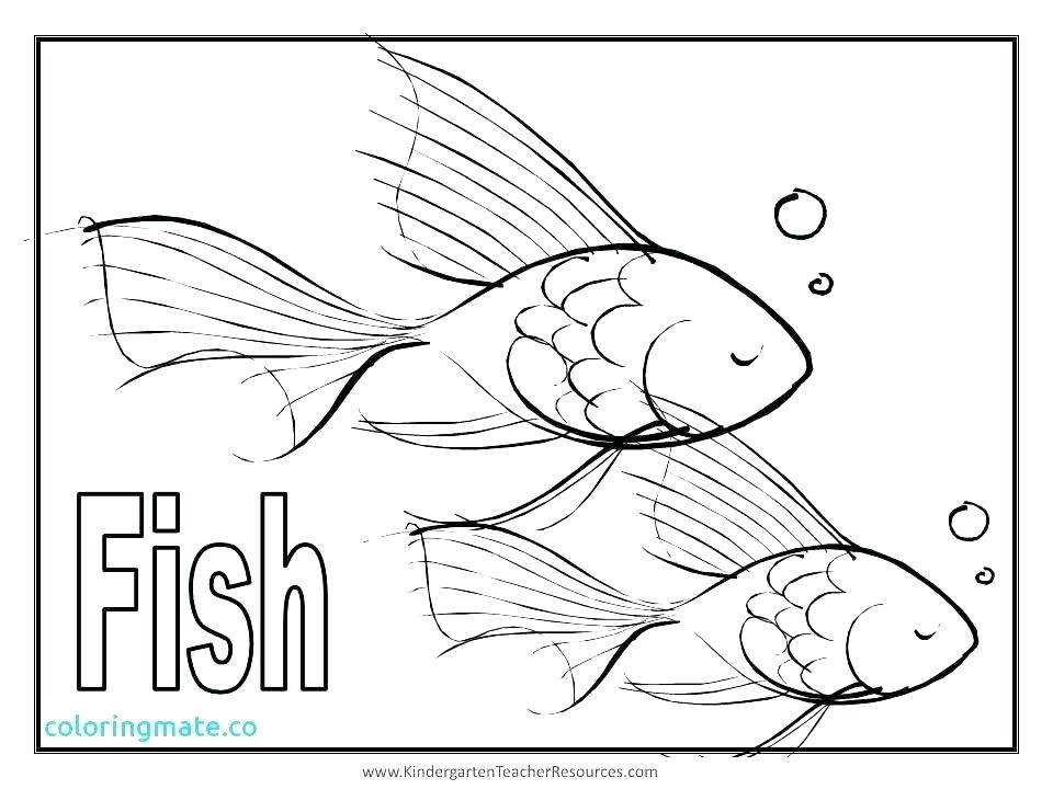 960x720 Tuna Fish Coloring Page Whitening Strips Reviews