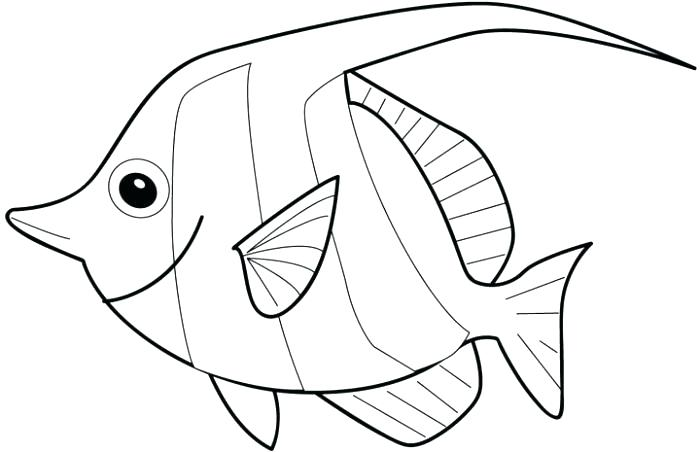 700x452 Coloring Pages For Kids Pdf Tuna Drawing At Free Personal Use