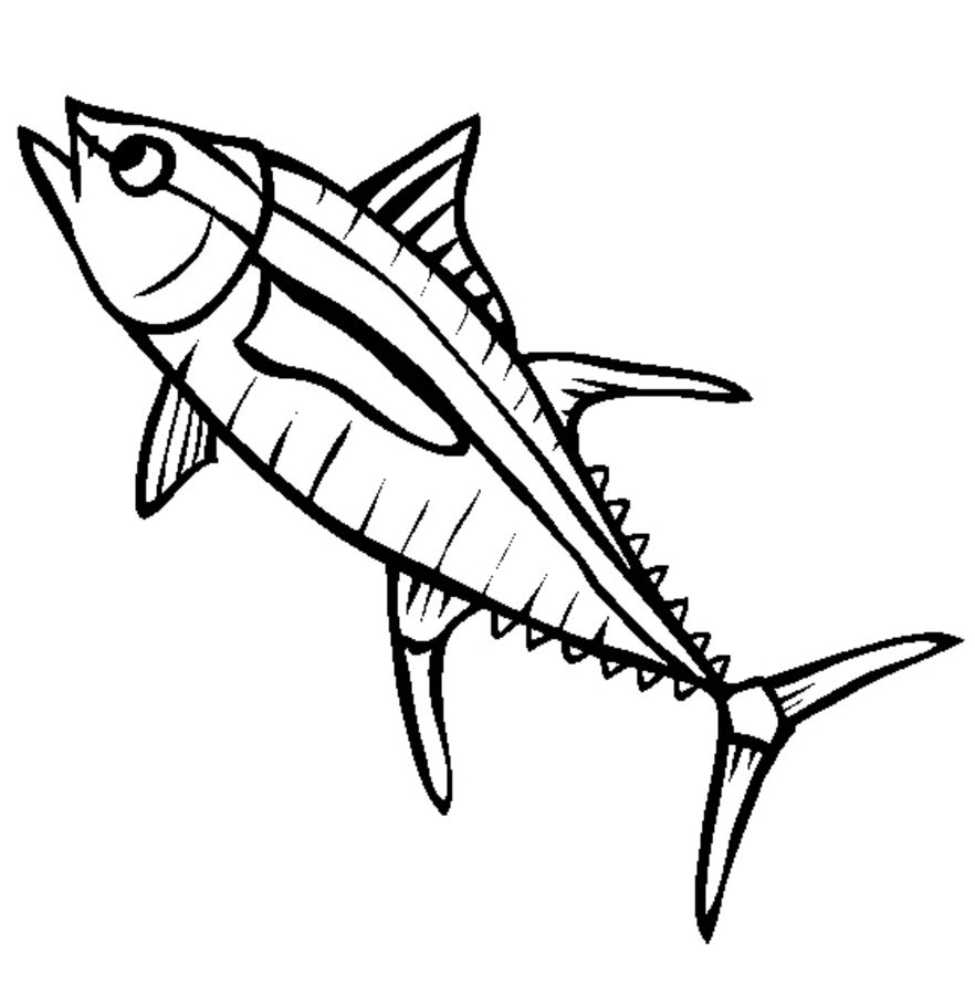 882x900 Coloring Pages Tuna, Printable For Kids Adults, Free