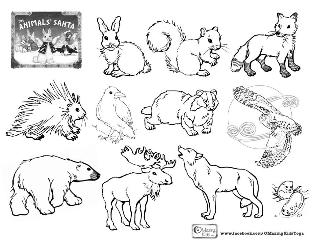 1024x789 Coloring Pages Arctic Animals Coloring Page Fun