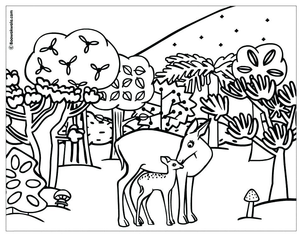 970x755 Coloring Sheets Winter Animals Cute Coloring Arctic Tundra Animals