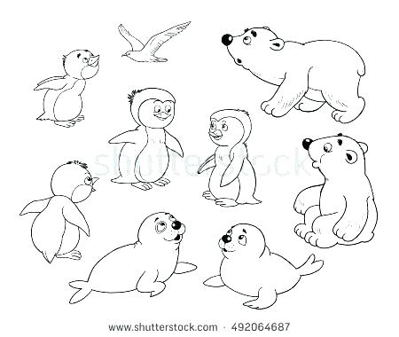 450x380 Arctic Animals Coloring Pages Arctic Animals Coloring Pages