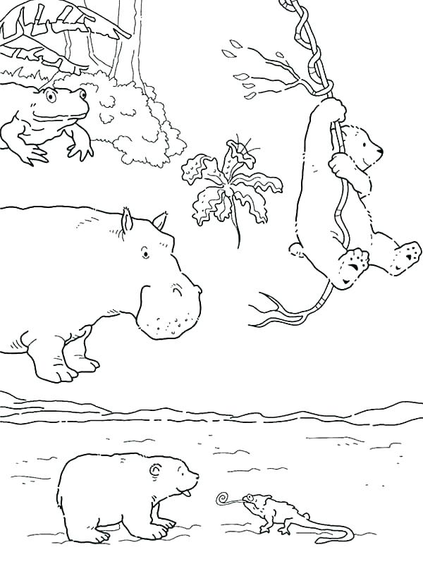 600x827 Arctic Animals Coloring Pages Seal Winter Animal Coloring Pages
