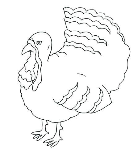 447x500 Turkey Color