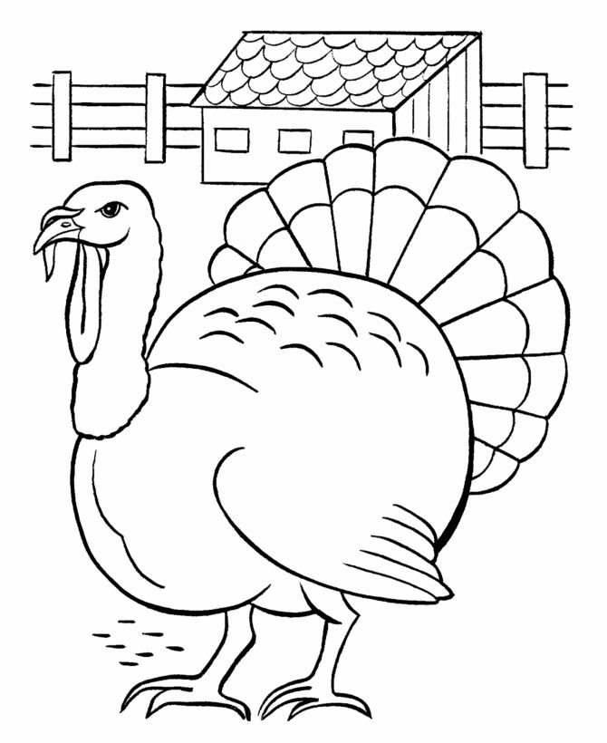 670x820 Best Thanksgiving Coloring Pages Images On Free