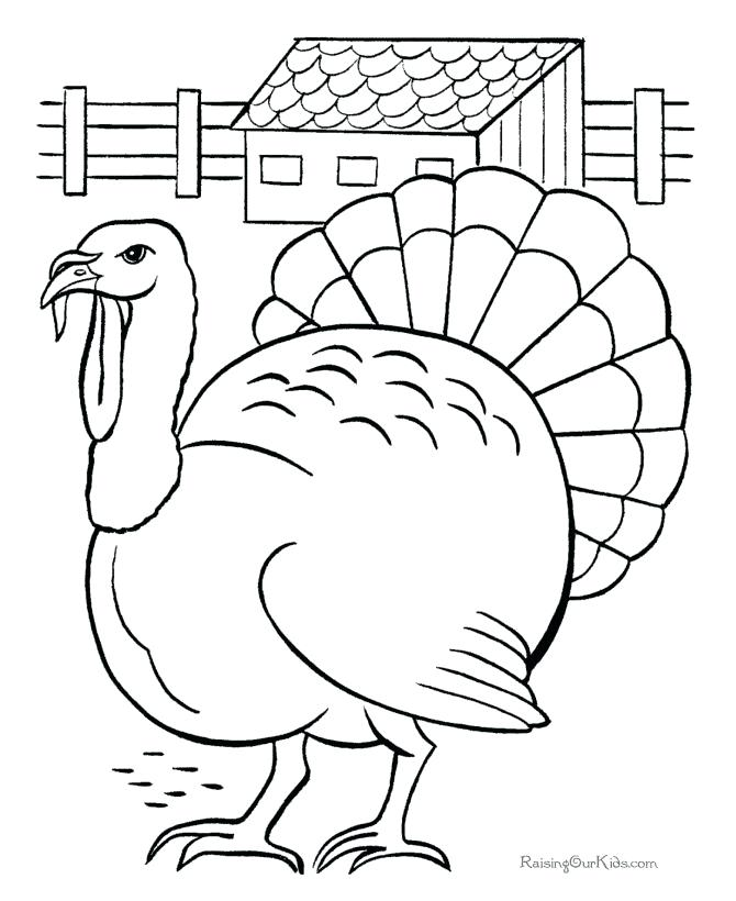 670x820 Ideas Turkey Coloring Pages For Preschoolers For Baby Turkey