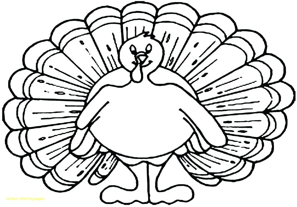 1024x715 Free Turkey Coloring Page Coloring Page Of Turkey Free Free Turkey