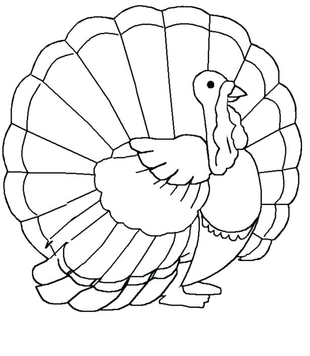 615x705 Turkey Images To Color Also Thanksgiving Turkey Coloring Page Free