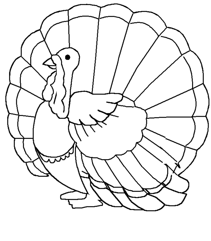 Turkey Coloring Pages Images