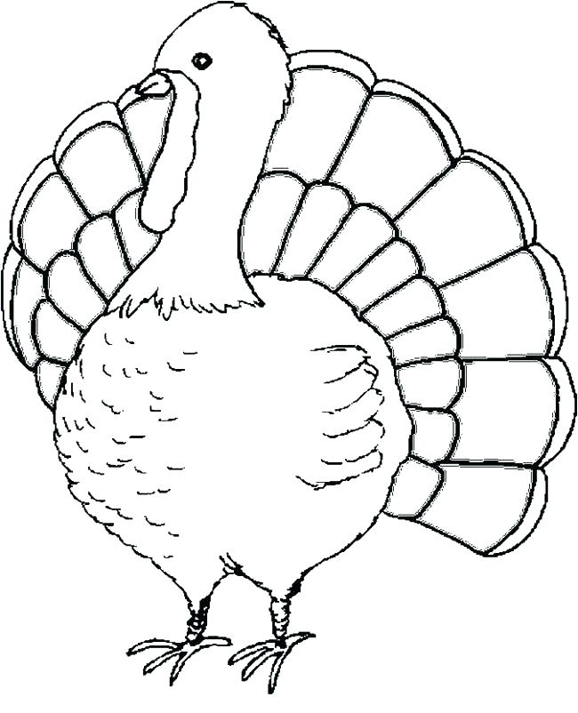 650x802 Turkey Coloring Pages Simple Turkey Coloring Sheets Or Decorating